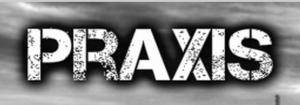 logo cut praxis